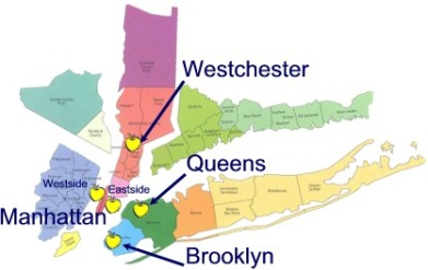 new york-abortion-map