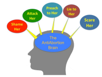 The Anti Abortion Brain